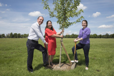 Tree Planting-108